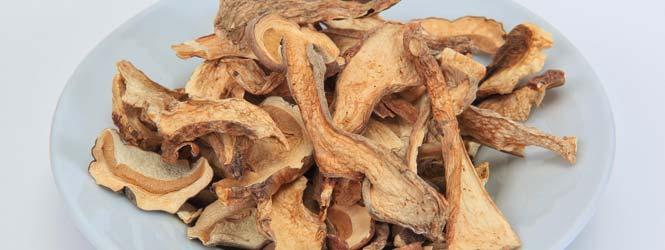 Houbový segedínský guláš
