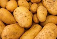 Náhled segedínský guláš s bramborami